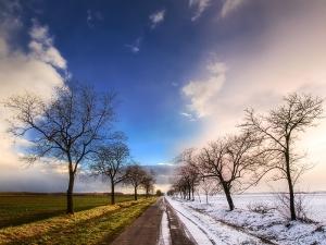 seasons_changing